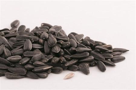Семена подсолнечника не очищенные 250г. - фото 4754