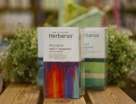 Чай чёрный и зелёный с травами ™  Herbarus  Ассорти в фильтр пакетах 24 шт *2г - фото 7922