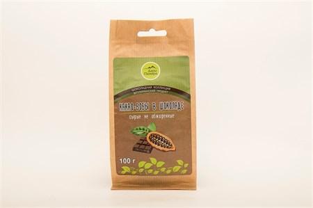 Какао-бобы ™  Дары Памира  сырые в горьком шоколаде 100г - фото 5152