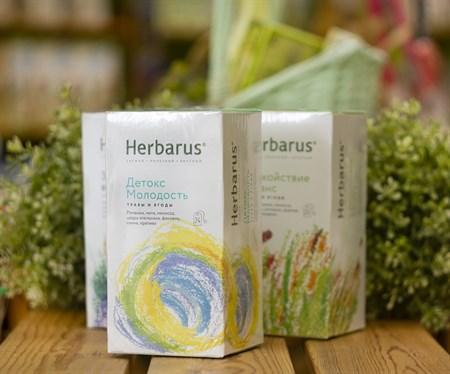 Чай из трав  ™  Herbarus  Детокс Молодость в фильтр пакетах 24 шт *1,8 г - фото 7914