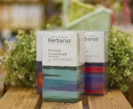 Чай зелёный с травами ™  Herbarus  Мятный Спокойный в фильтр пакетах 24 шт *2г - фото 8015